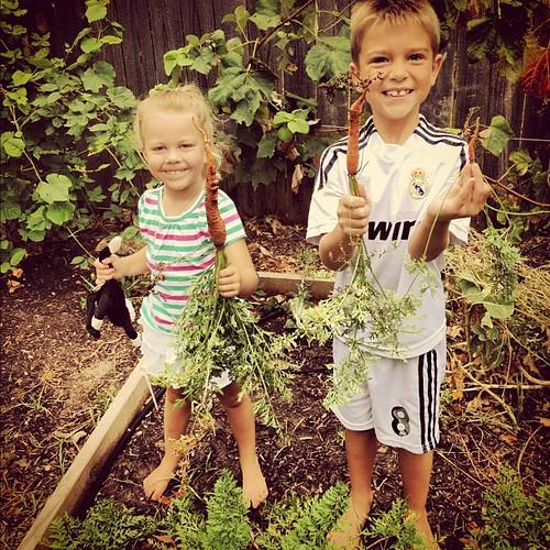 Uncle Scott grows carrots