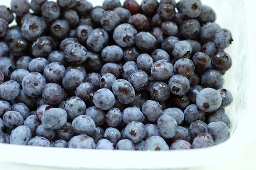 Blueberries from Grieg Farms by Eve Fox, Garden of Eating blog, copyright 2012
