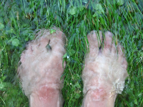 toes in the grass and flowing water