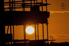 সোনালি সকাল ( A Golden Morning )