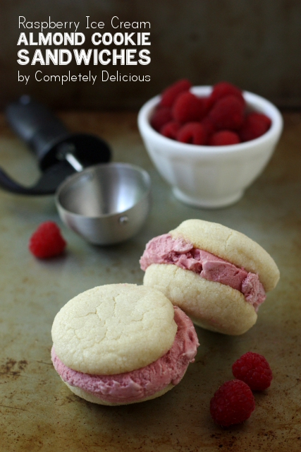 IMG_Raspberry Ice Cream Sandwiches