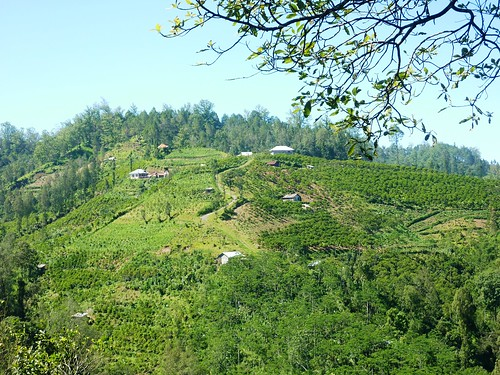 Bali-Batur (22)
