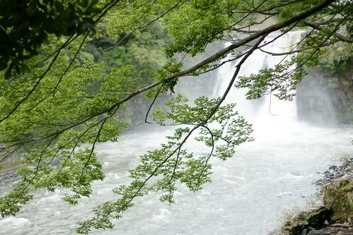 sony 日本 goryu α 静岡 sal50f14 dslra700 susonochuopark 五竜の滝 裾野市中央公園