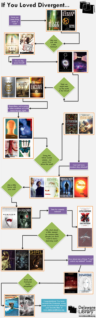 If-You-Loved-Divergent-flowchart