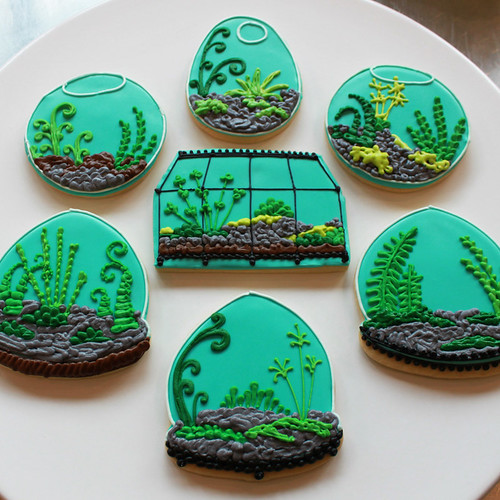 Terrarium Cookies!
