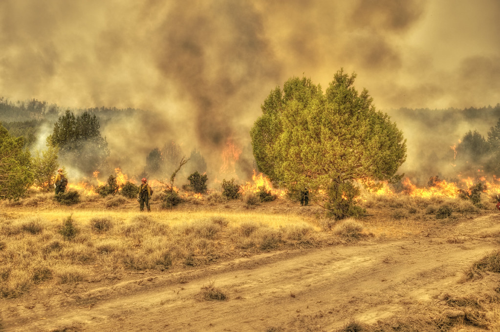 Barry_Point_Fire_13 - by BLMOregon Barry_Point_Fire_13 - by BLMOregon