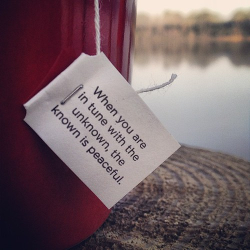 True to the that. #yogi #tea #wisdom