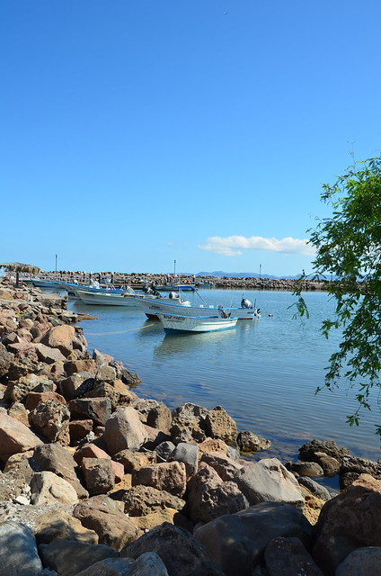 VDP Loreto 2012: Dock