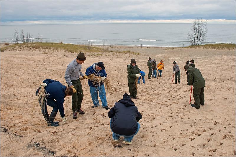 Restoring the Dunes