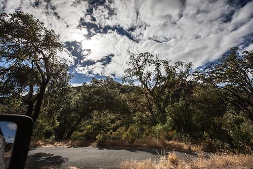 california unitedstates hopland