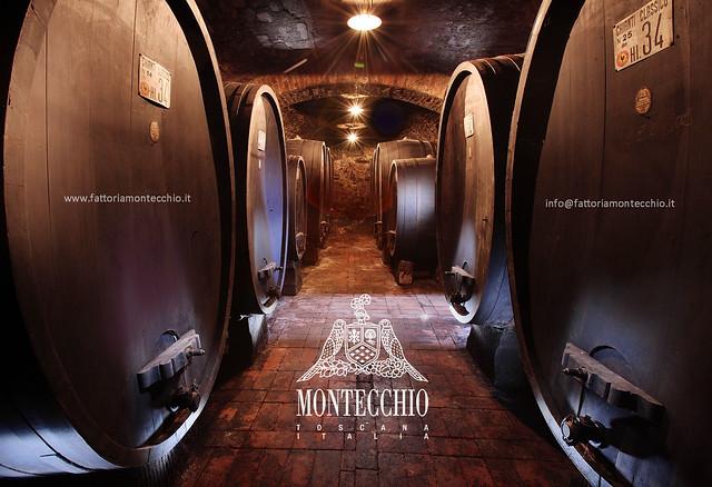 Chianti Classico Fattoria Montecchio Toscana