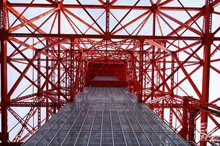 東京タワーあおり_25mmF80_GM