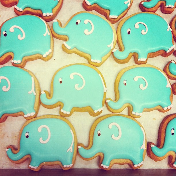 Elephant sugar cookies | Flickr - Photo Sharing!