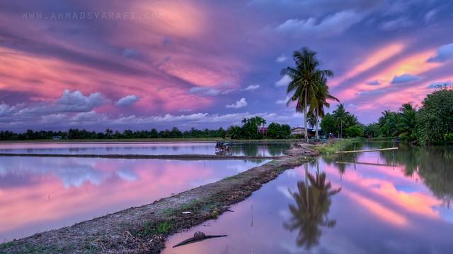 Kampong View II