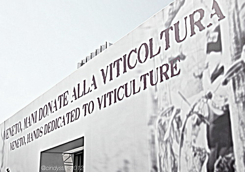 veneto hosting region