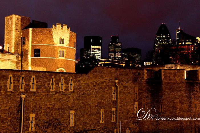 20111229_London 030