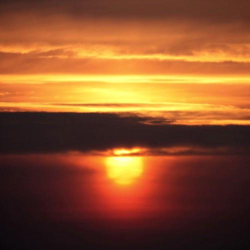germany deutschland sachsenanhalt saxonyanhalt magdeburg stadt city place sonne sun sunrise sonnenaufgang morgens inthemorning natur nature orange crop verschwommen blurred squareformat canoneos450d canon eos 2012 geotagged geo:lon=11616159 geo:lat=52069141