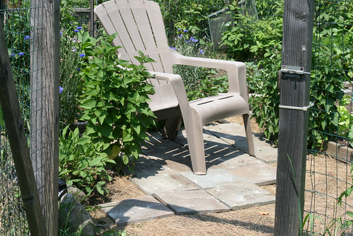 little bluestone patio 007