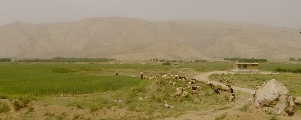 shiraz-tabriz-L1030630