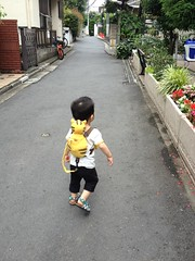 朝散歩 (2012/7/6)