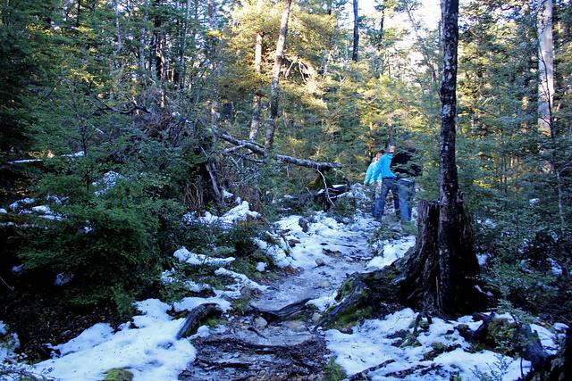 Snow hike