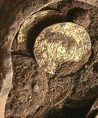 crusader gold hoard1