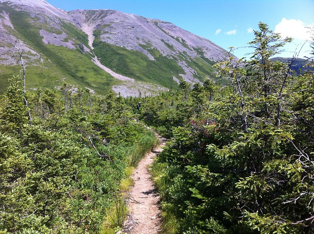 Almost at the base of Gros Morne Mountain
