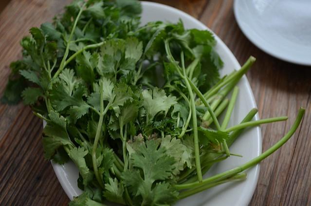 cilantro on plate