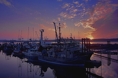 image_campbell_river_harbour
