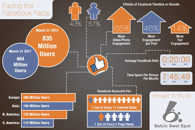 Facebook Infographic 2011 - 2012