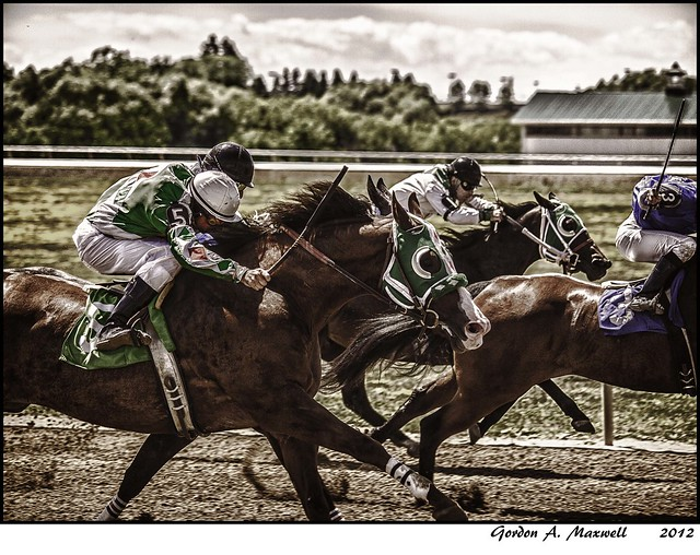 Quarter Horse Races_2A