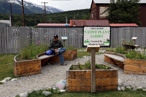 Skagway - Native Plant Garden