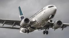 Westjet 737-700 (C-GLWS)