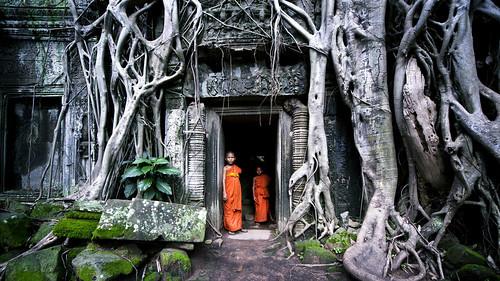 Interaction @Ta Prohm, Cambodia