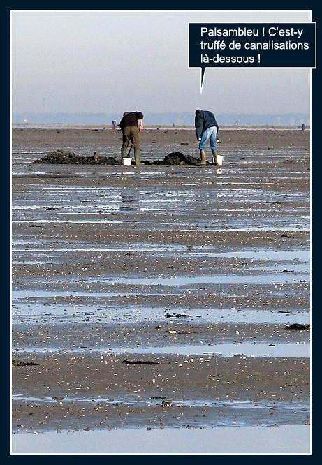 La pêche aux palourdes (bédé photo-roman) 8167216524_f54876f646_b