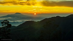 Golden Sunrise - Sikunir Hill - Wonosobo Indonesia II