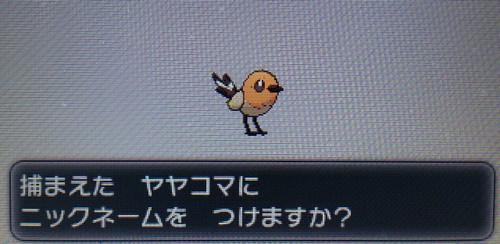 pokemonXY_2_140404