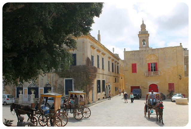 mdina horse carriages