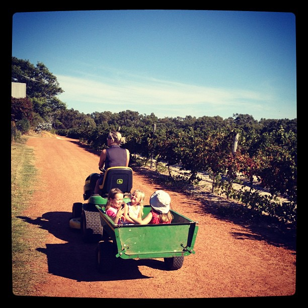 3 kids going for a tractor ride..