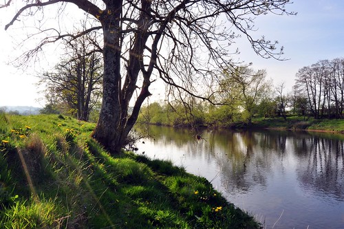 River Eden early evening in May