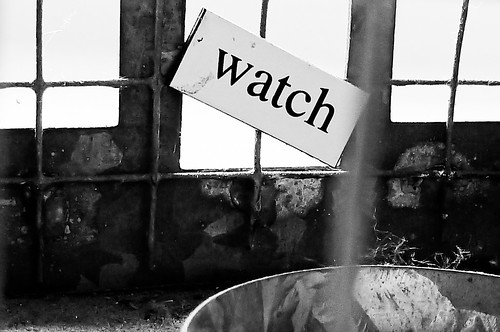 Watch Magnetic Poetry