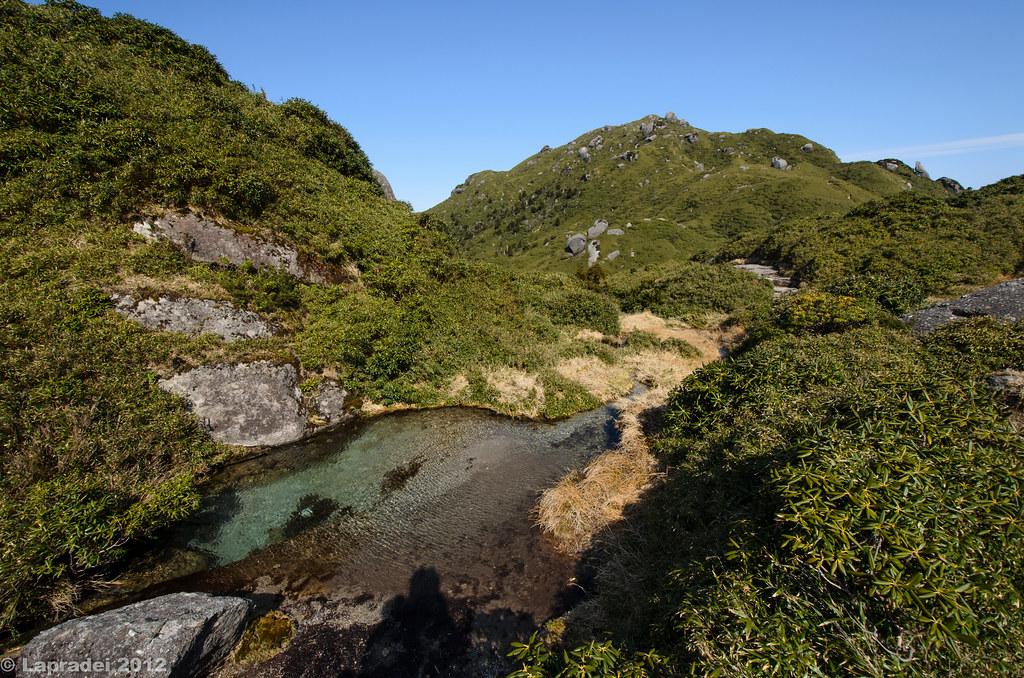 水を湛えた登山道
