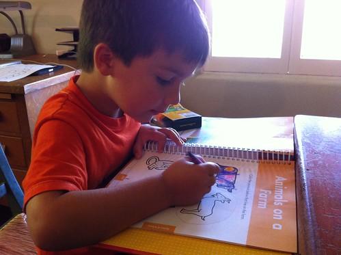 Finn's workbook