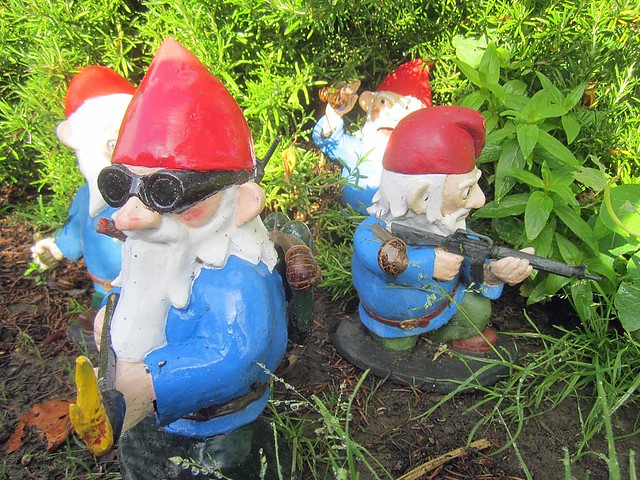 More Combat Garden Gnomes