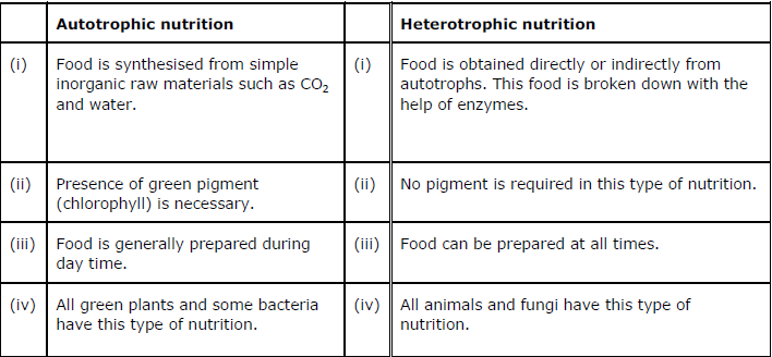assignment 3 nutrition