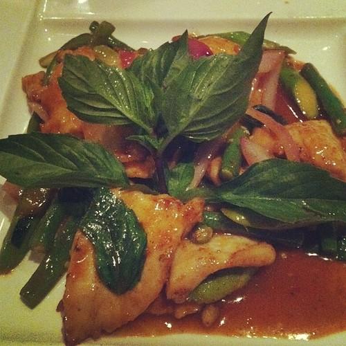 Thai Basil Chicken - the spiciest dish I've ever had #newyork #HellsKitchen #NYC #food