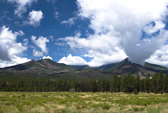 A View of the San Francisco Peaks