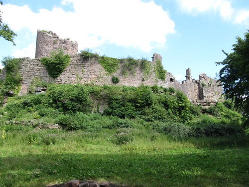 ruine du chateaux frankenbourg 165