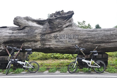 翠峰景觀道路