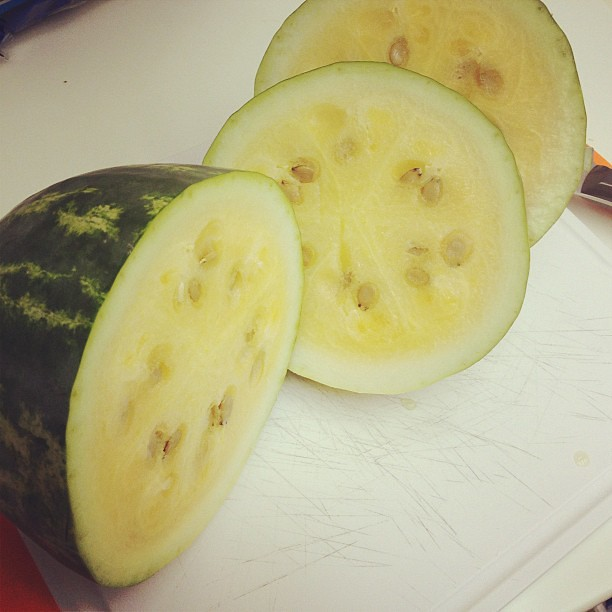 Holy crap I grew a watermelon!